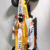 大成功のうちに終わった雪上のデモンストレーション (2009 F1)  (c)RenaultF1